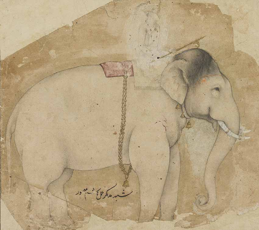 The royal elephant Madhukar, by Hashim, Mughal, probably Agra, circa 1630-1640 © The Fitzwilliam Museum, University of Cambridge