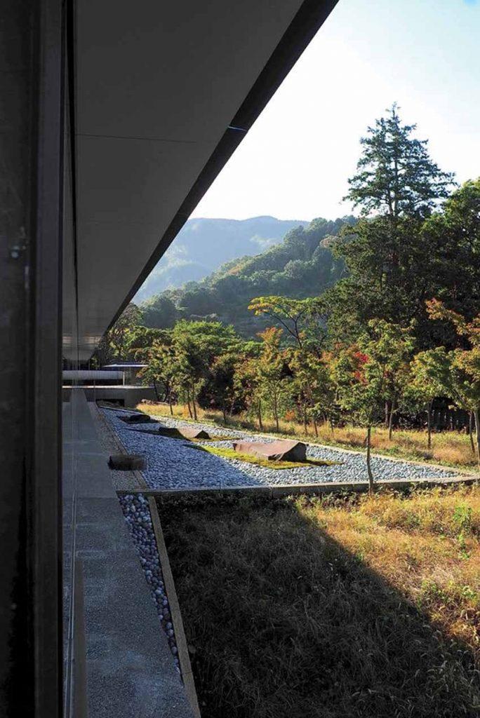 View of the Summer Solstice Garden